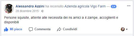Dice di noi Alessandra Azzini